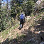 Tag 04 - 14.06.2019 Sandia Mountain Wilderness